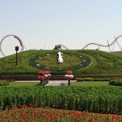 Clock made with Flowers in Dubai UAE