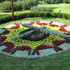 Missouri Botanical Garden floral clock with custom clock hands