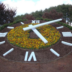 Atlanta GA airport clock with flowers